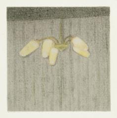 o. T., Farbstift auf Papier, 10 x 10 cm, 2017