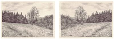 HEIMATLAND VII, 2-teilig, Graphit auf Papier, je 10 x 14,5 cm, 2012