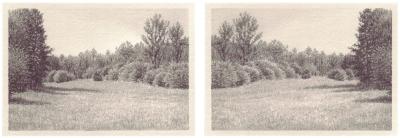 HEIMATLAND VIII, 2-teilig, Graphit auf Papier, je 10 x 14,5 cm, 2012