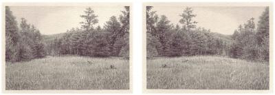 HEIMATLAND IX, 2-teilig, Graphit auf Papier, je 10 x 14,5 cm, 2012