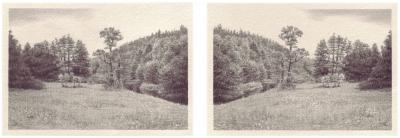 HEIMATLAND XII, 2-teilig, Graphit auf Papier, je 10 x 14,5 cm, 2012