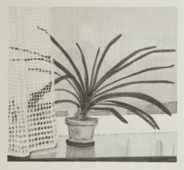 o. T., Graphit auf Papier, 14 x 15 cm, 2017