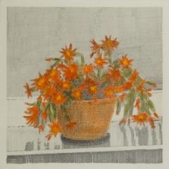 OSTERKAKTUS, Farbstift und Graphit auf Papier, 14,8 x 14,8 cm, 2017